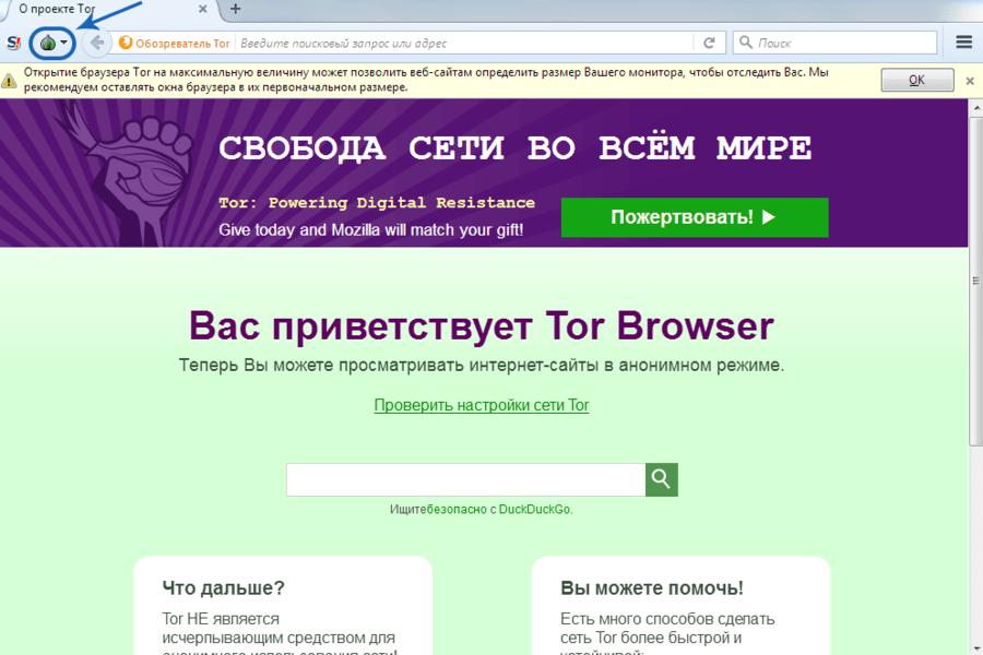 программы для браузера тор гирда