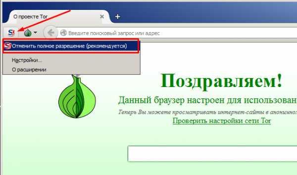 Использование браузера тор в россии tor pirate browser вход на гидру