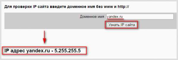Найти хостинг по адресу бесплатный хостинг с бесплатным доменом ru с php и mysql